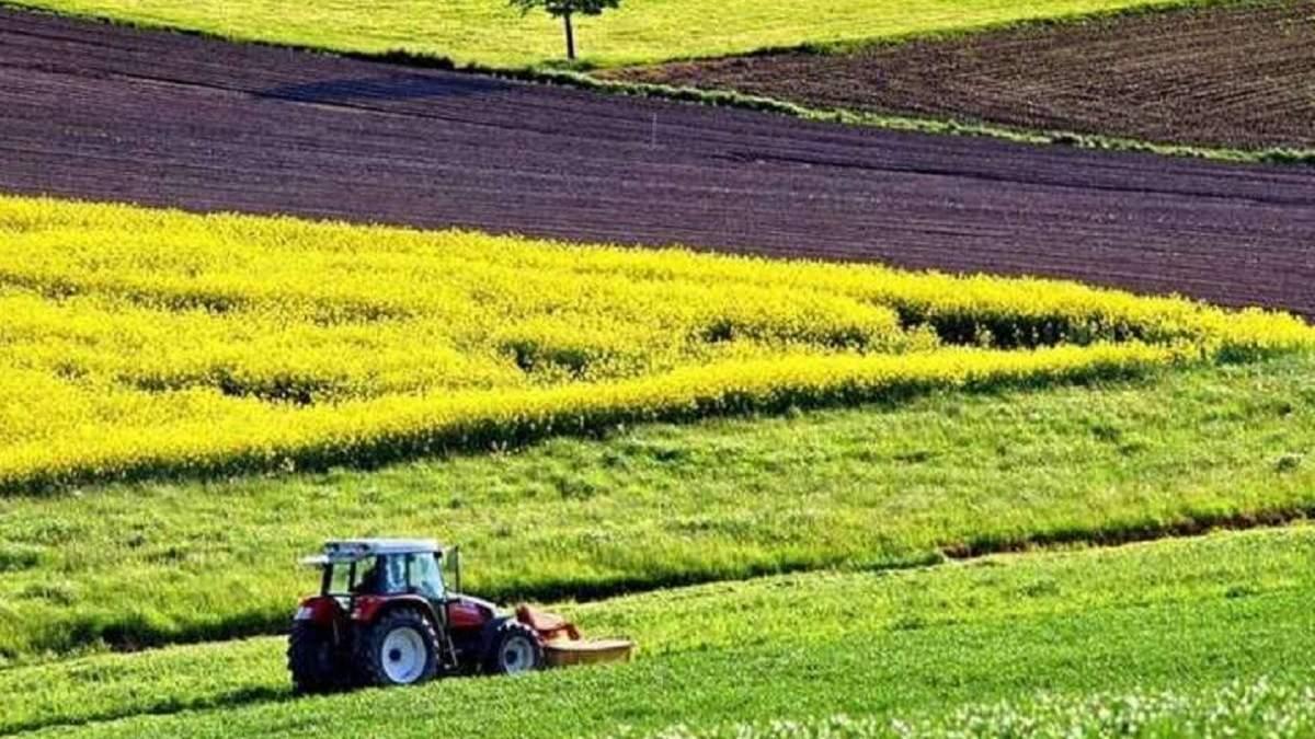 Відкриття ринку землі: Світовий банк закликає ухвалити додаткові закони