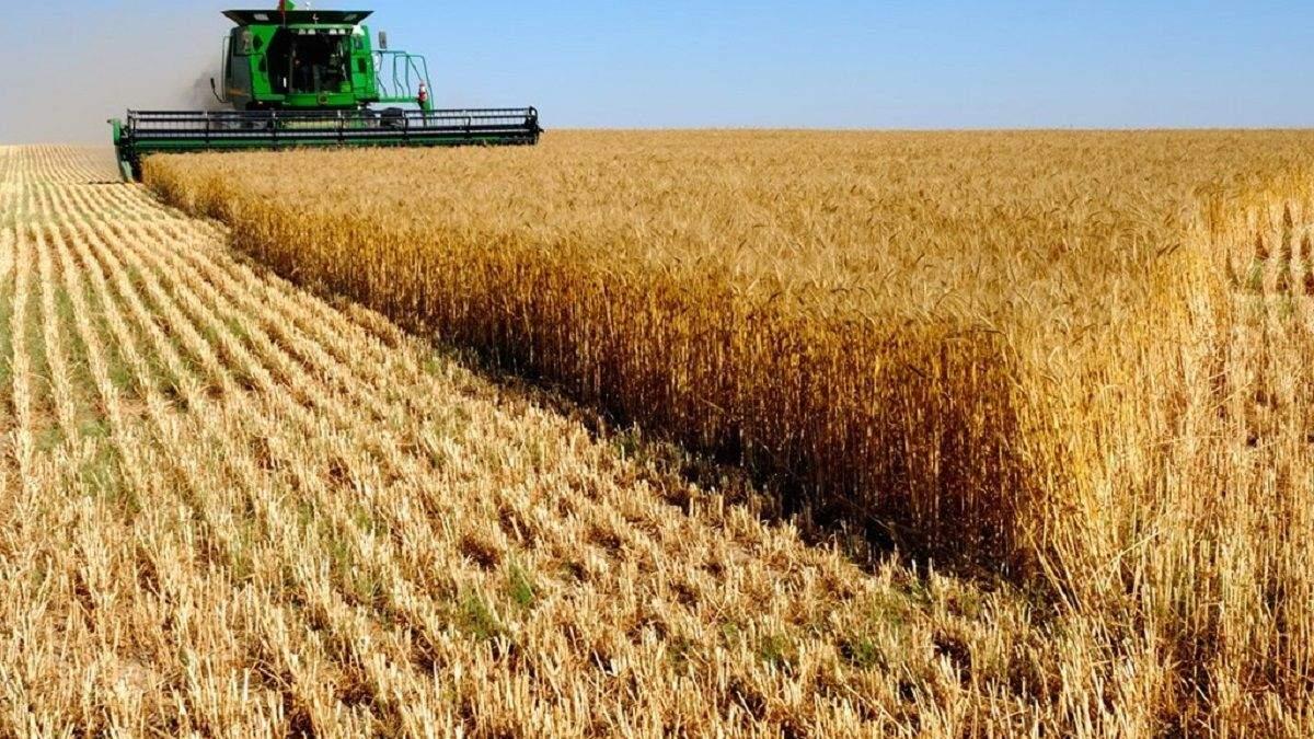 У селян настрій пригнічений, – прогноз експерта на урожай-2020