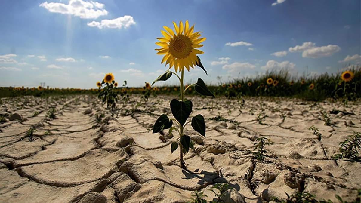 Ураганы, засуха, изменение климата в Украине: прогноз климатологов