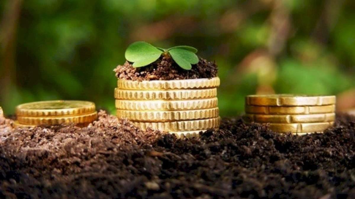 Інвестиції в аграрний сектор України