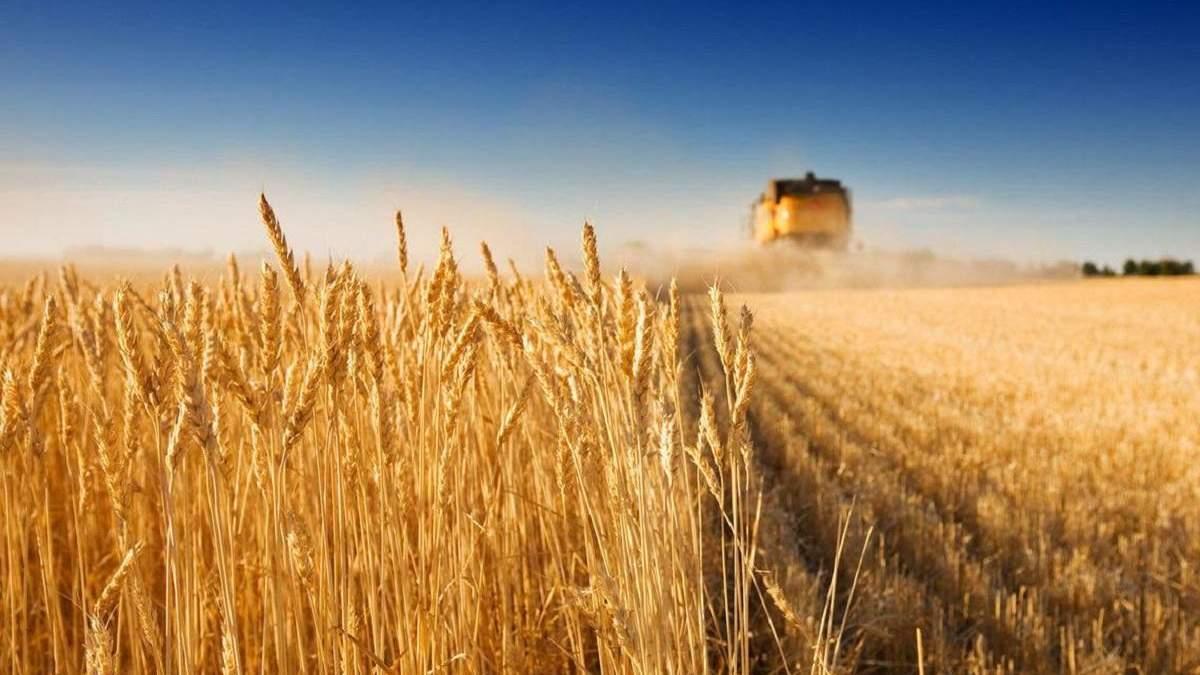 Украина соберет хороший урожай