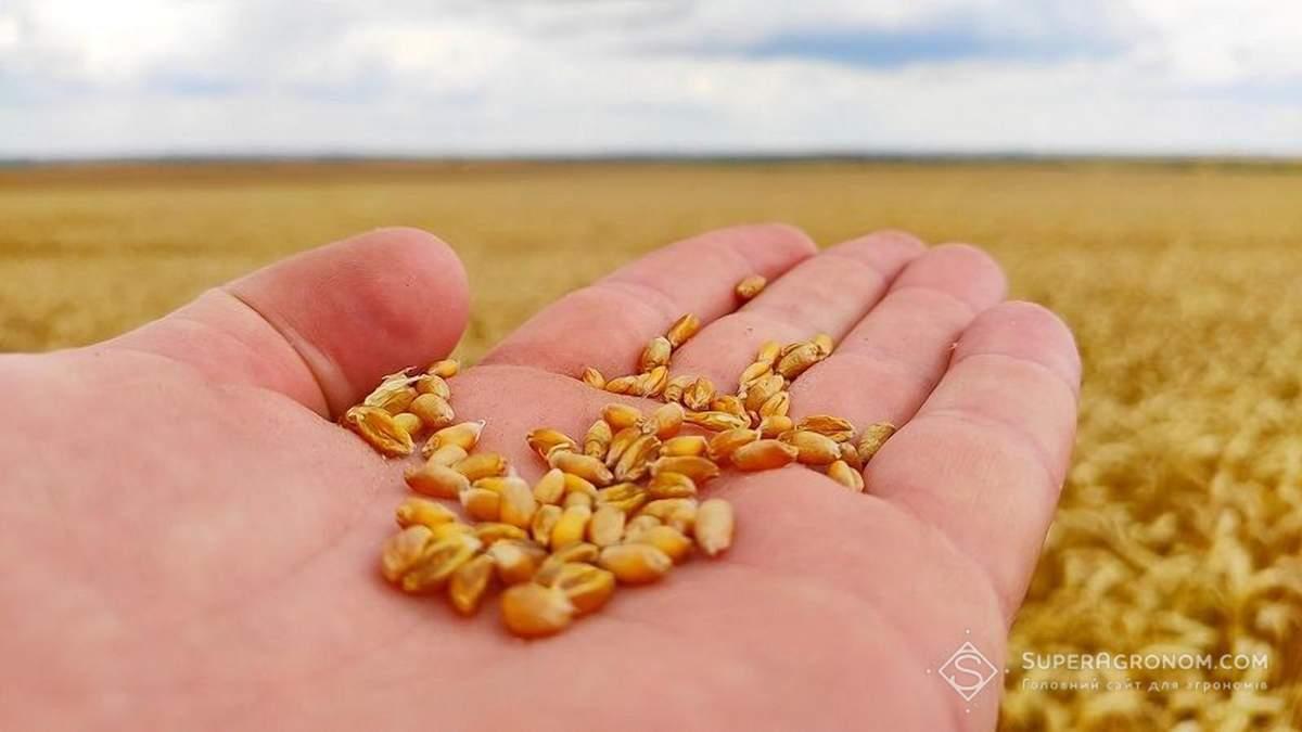 Україна знизила імпорт насіння