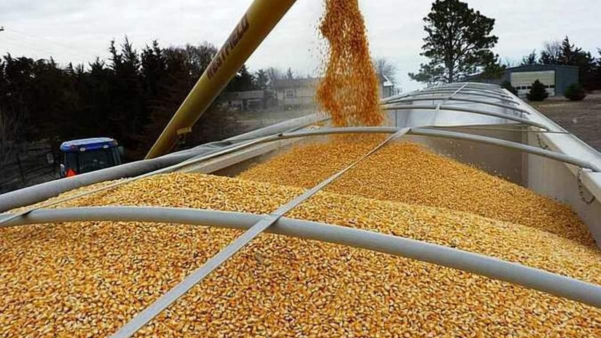 На скільки Україна знизила експорт зернових у 2020 році: порівняння