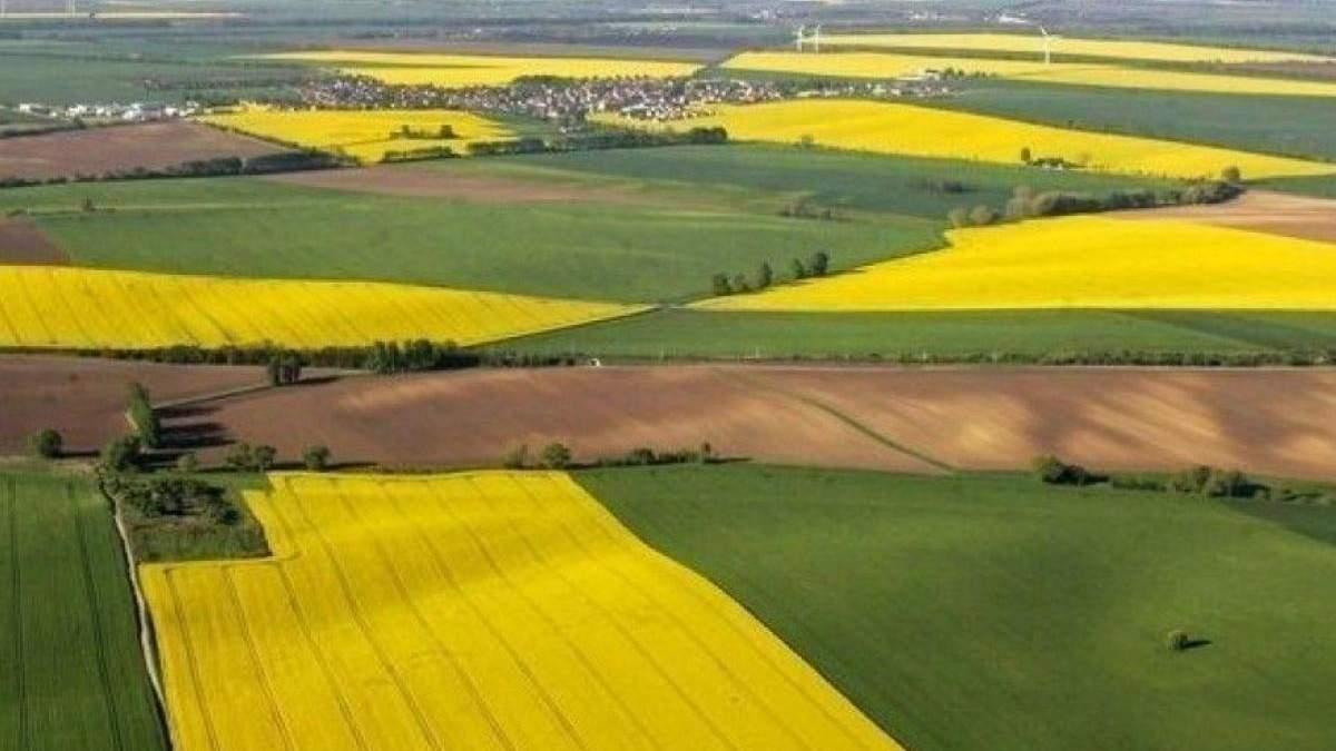Эрозия распространяется: в Украине предлагают законсервировать часть земель