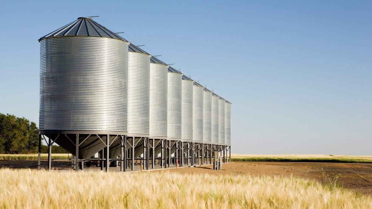 В Украине сократились запасы масличных и зерновых культур