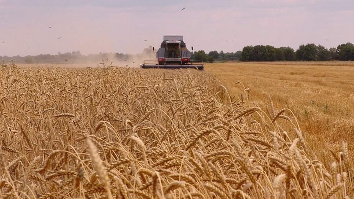 """""""Голос"""" как сигнал: ученые научили растения говорить фермерам об опасности"""