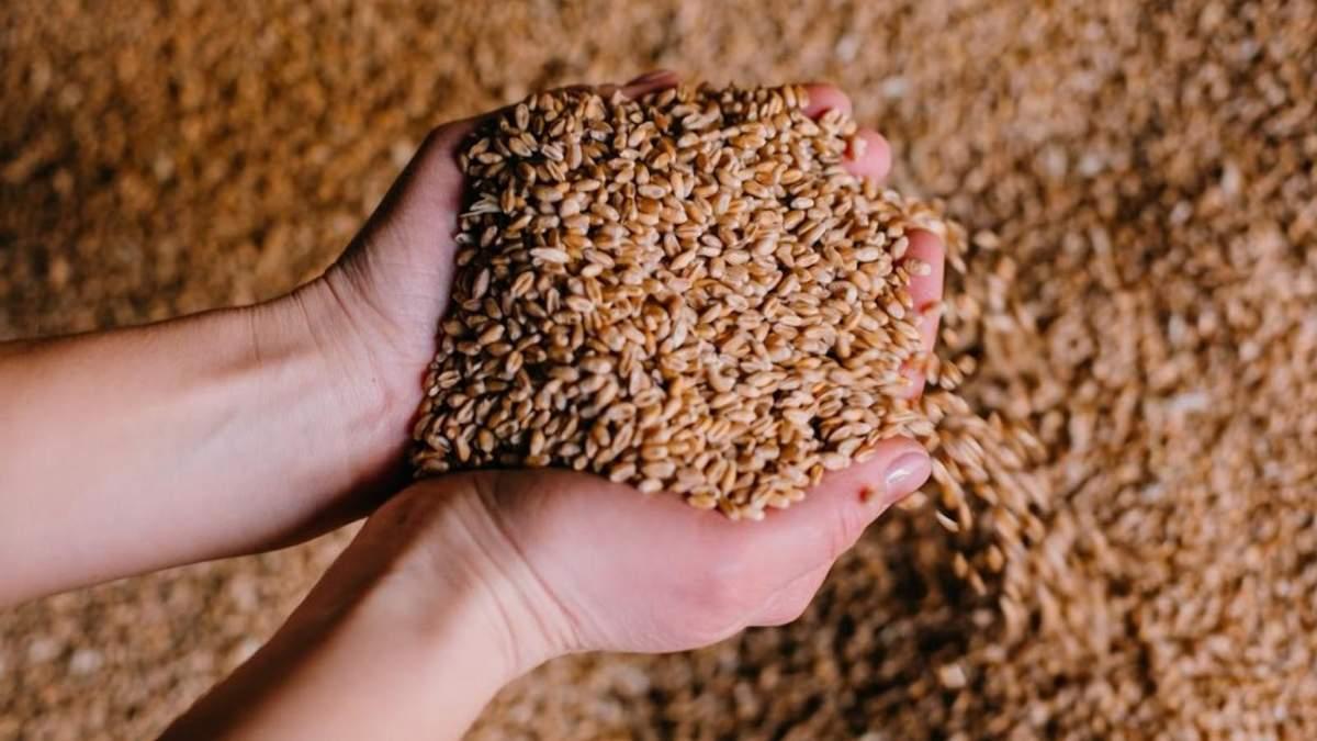 Цены на продовольственные культуры продолжают расти