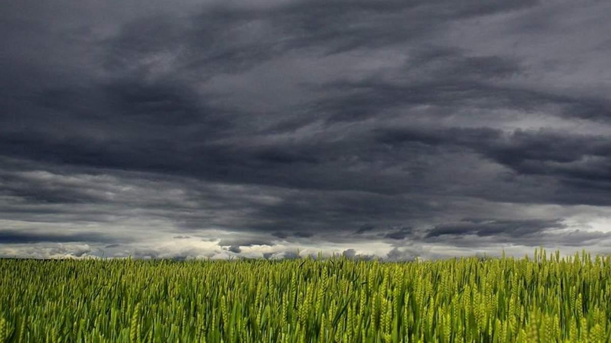 Клімат-2021: чого чекати аграріям від погоди