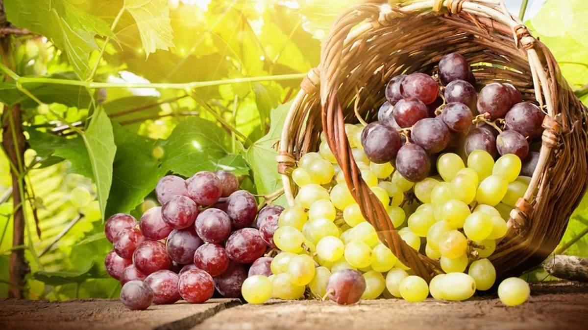 Експорт турецького винограду в Україну зростатиме