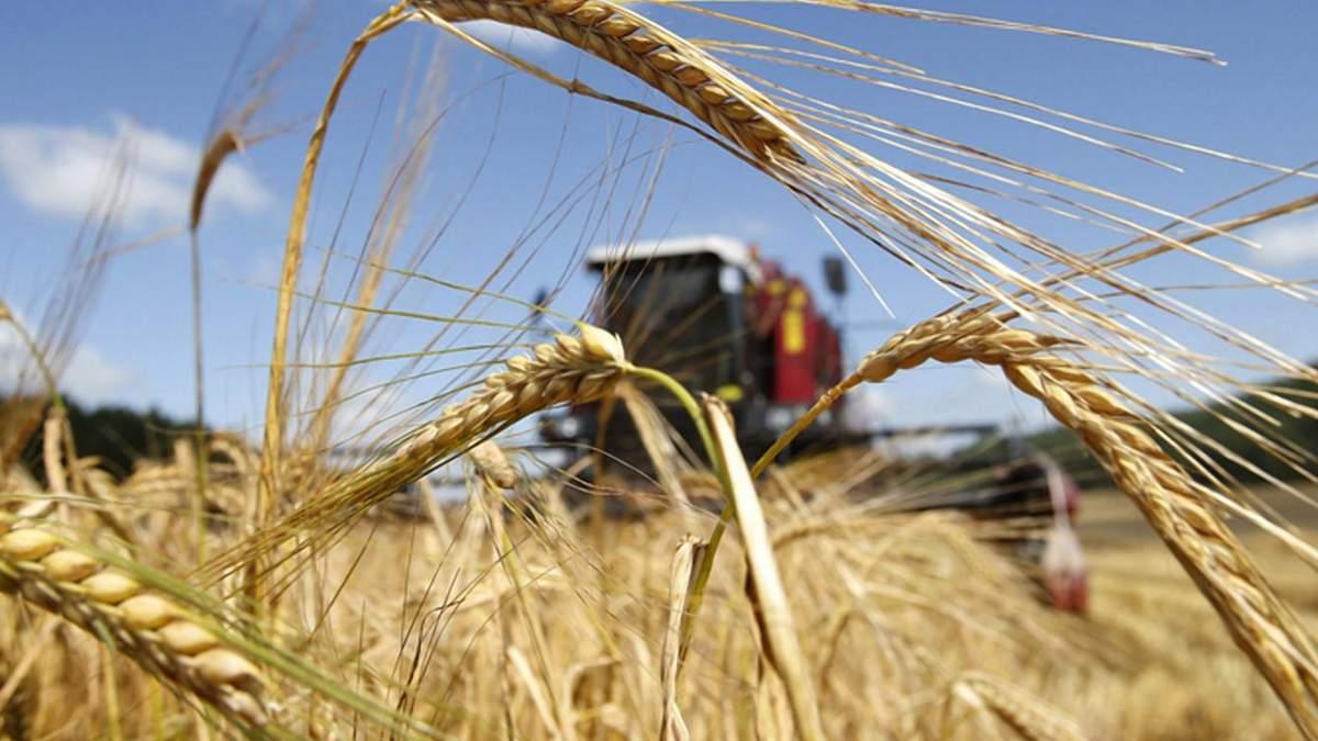 Урожай-2020: підсумки року