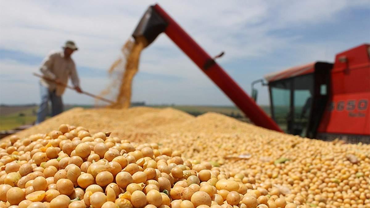 Украина втрое нарастила импорт сои