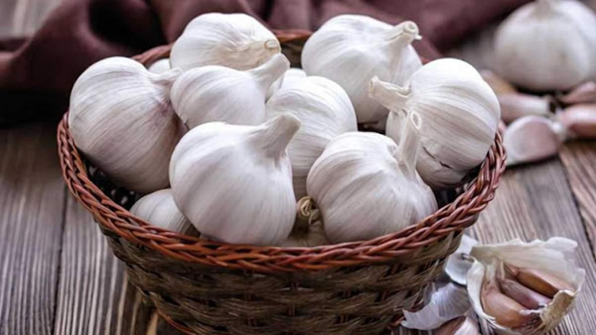 Украина начала экспортировать чеснок в Великобританию