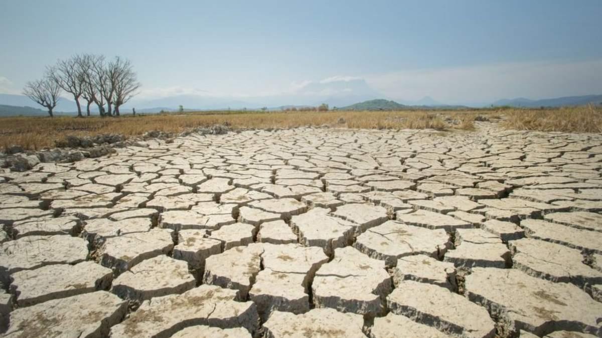 Крым от засухи 2021 года не спасут даже обильные осадки, – ученые