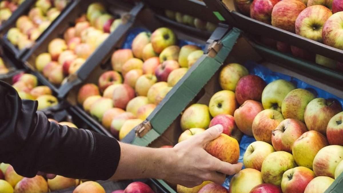 В магазинах появятся яблоки, которые хранят в специальных камерах