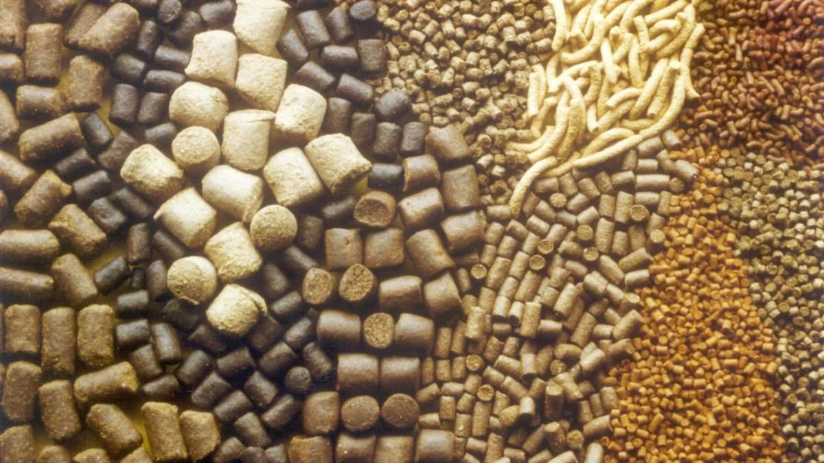 Якість корму можна визначити за допомогою спеціальних аналізаторів