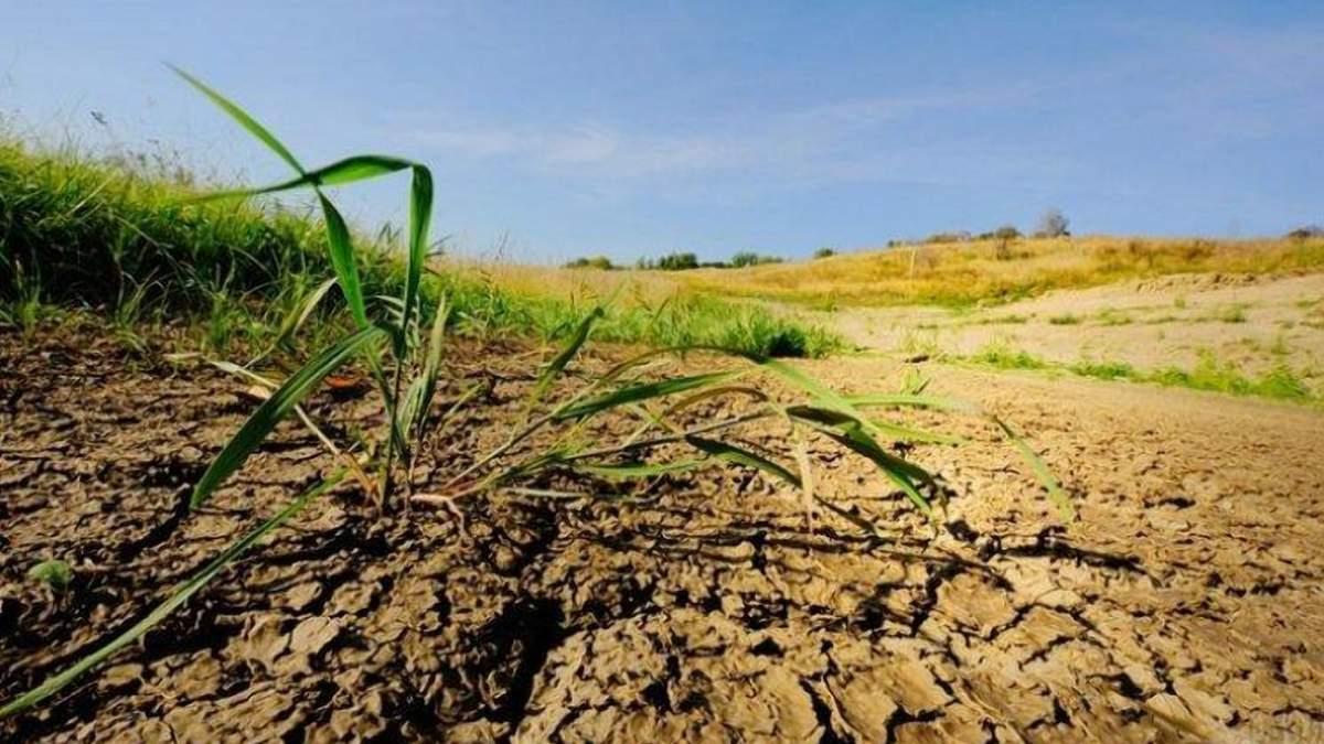 Забруднення земель: як зросли штрафи