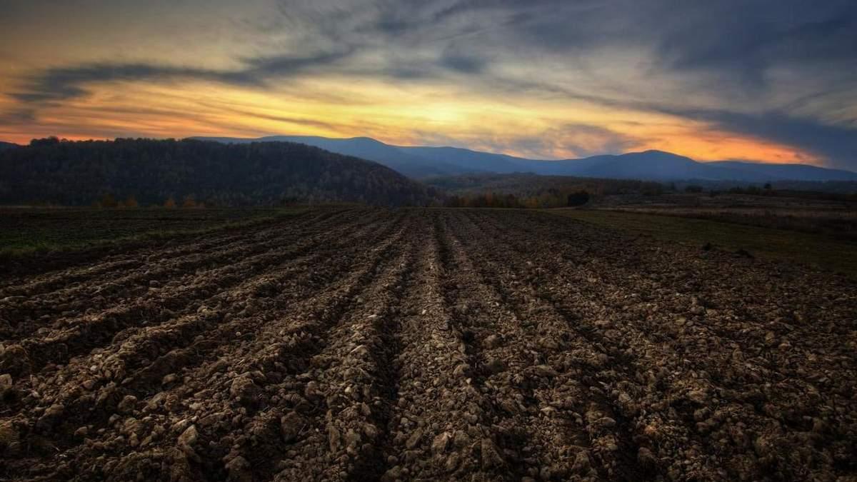 Деградация украинских почв набирает обороты, – исследование