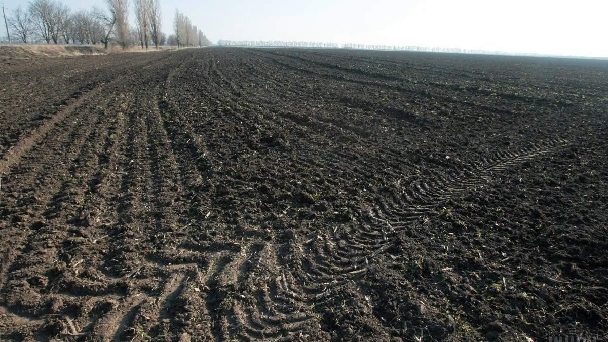 Госгеокадастр обновил реестр сельхозземель