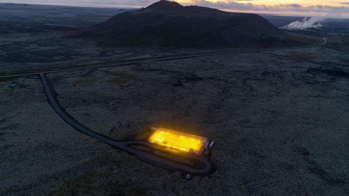 Геотермальна теплиця в Ісландії