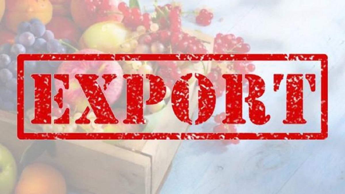 Экспорт – важная статья доходов Украины