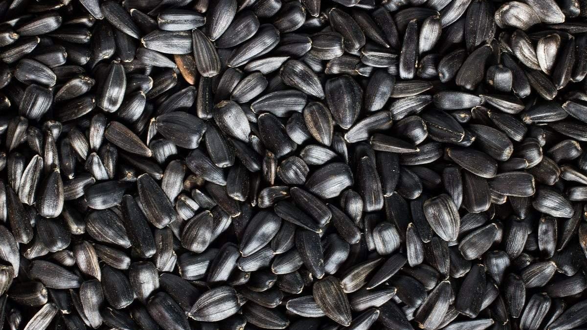 Украинские семена на экспорт