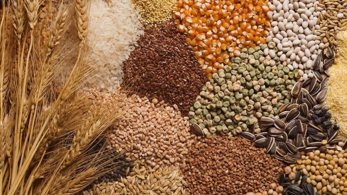 Продовольчі культури в Україні