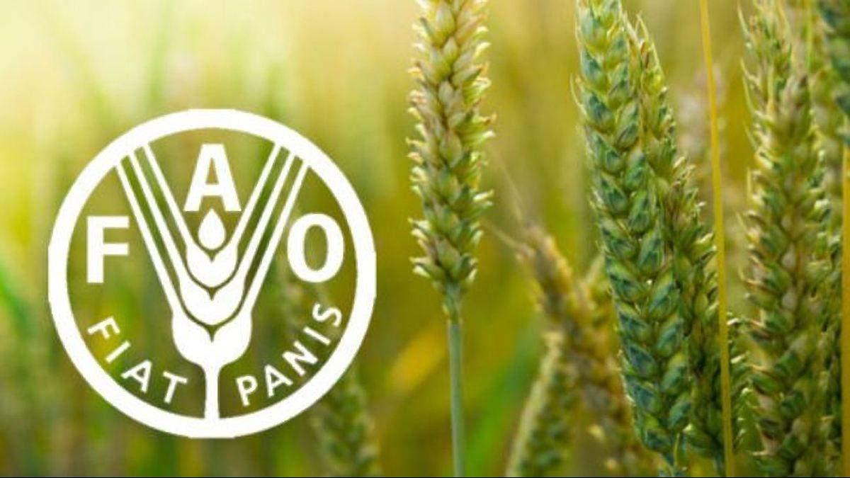 Украина вошла в Комитет по всемирной продовольственной безопасности