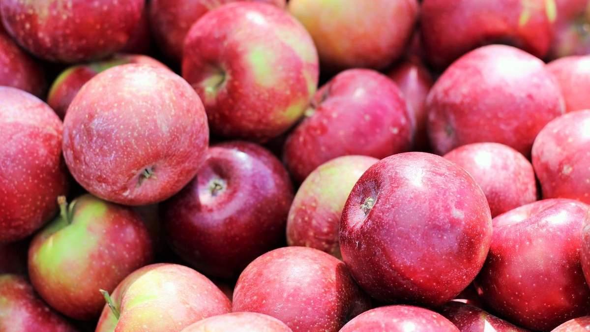 В Італії створили сорт яблука з тривалим терміном зберігання