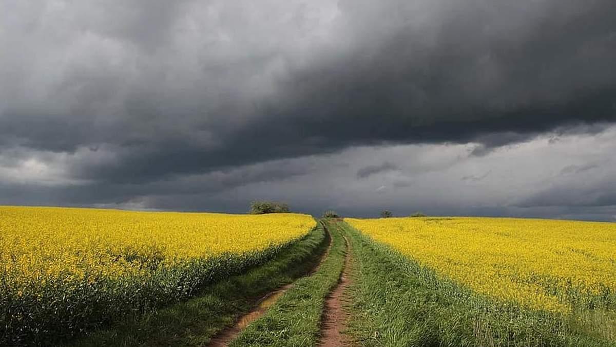 Украине прогнозируют аномальную весну: чего ждать фермерам