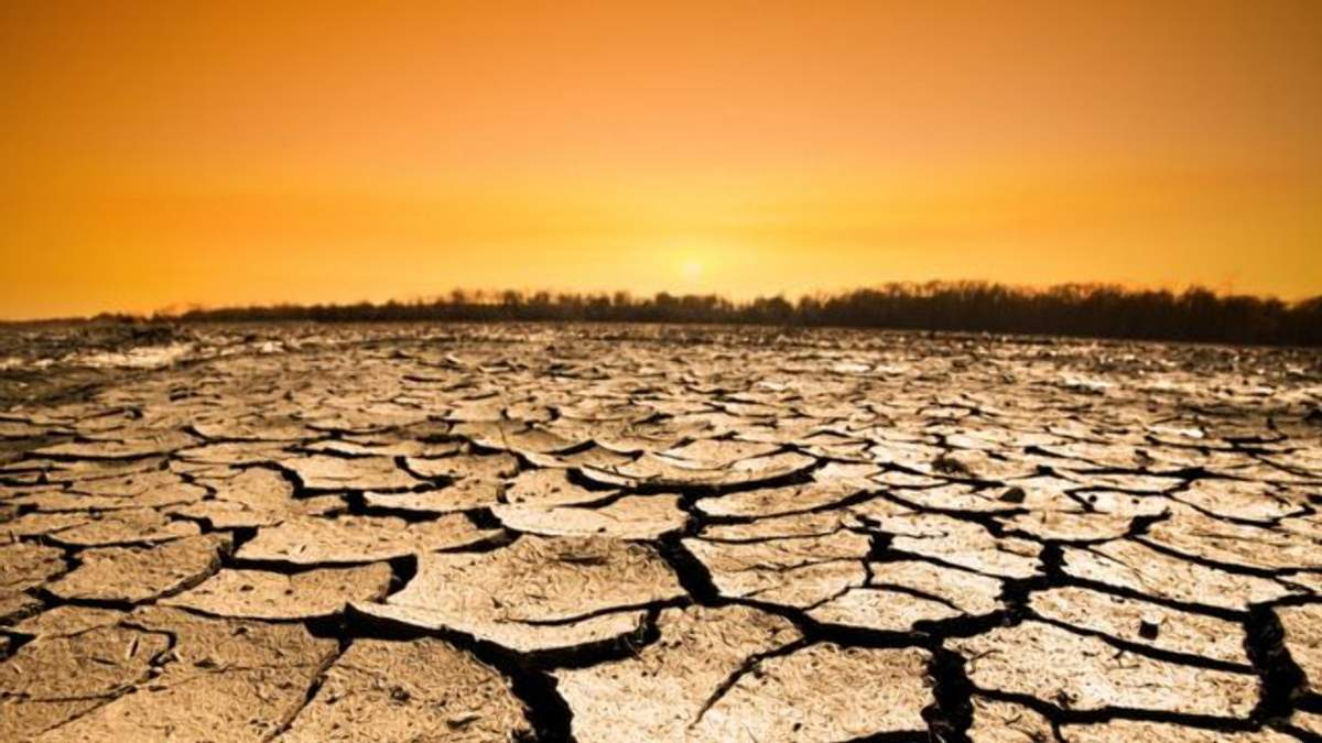Південь України може перетворитися у пустелю: невтішний прогноз зміни клімату