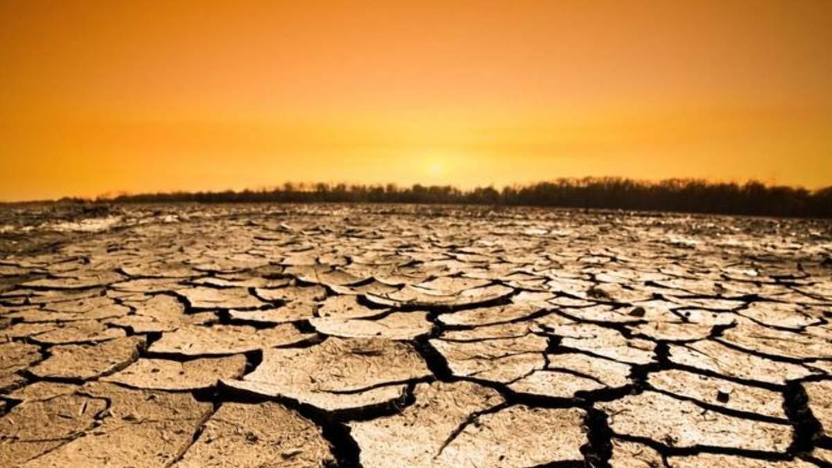 Украина может пострадать от глобального потепления / Фото из соцсетей