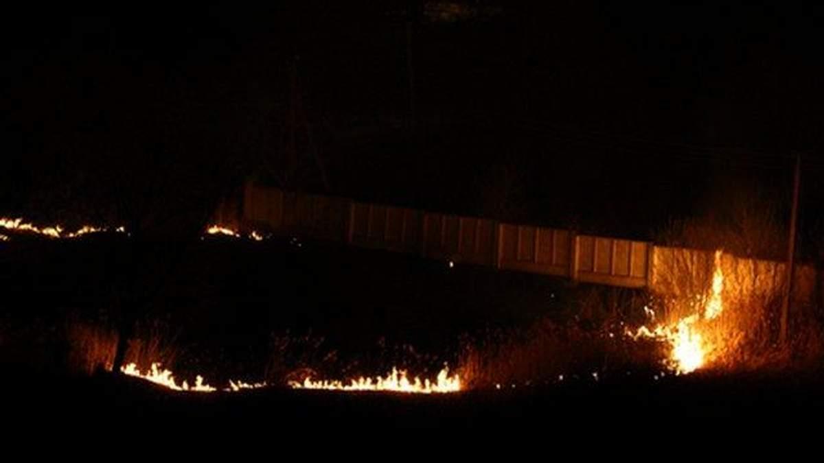 В Украине выросли штрафы за выжигание полей и лесов: суммы наказания