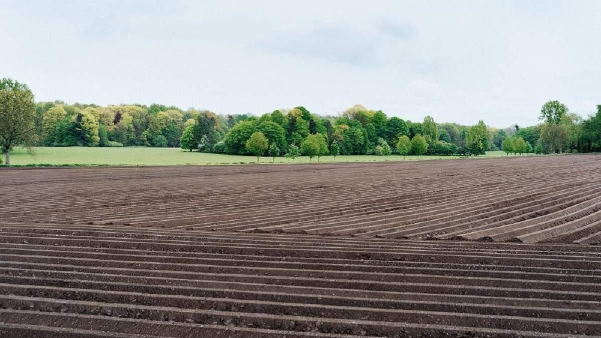 Стоимость земли в Украине