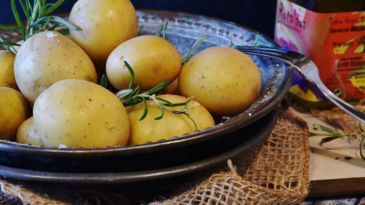 Украинцы – вторые в мире по потреблению картофеля