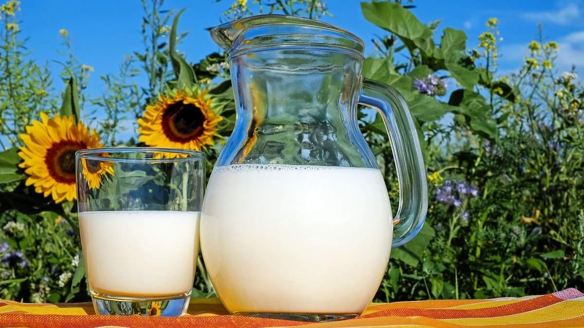 """Япония – новый рынок для украинской """"молочки"""""""