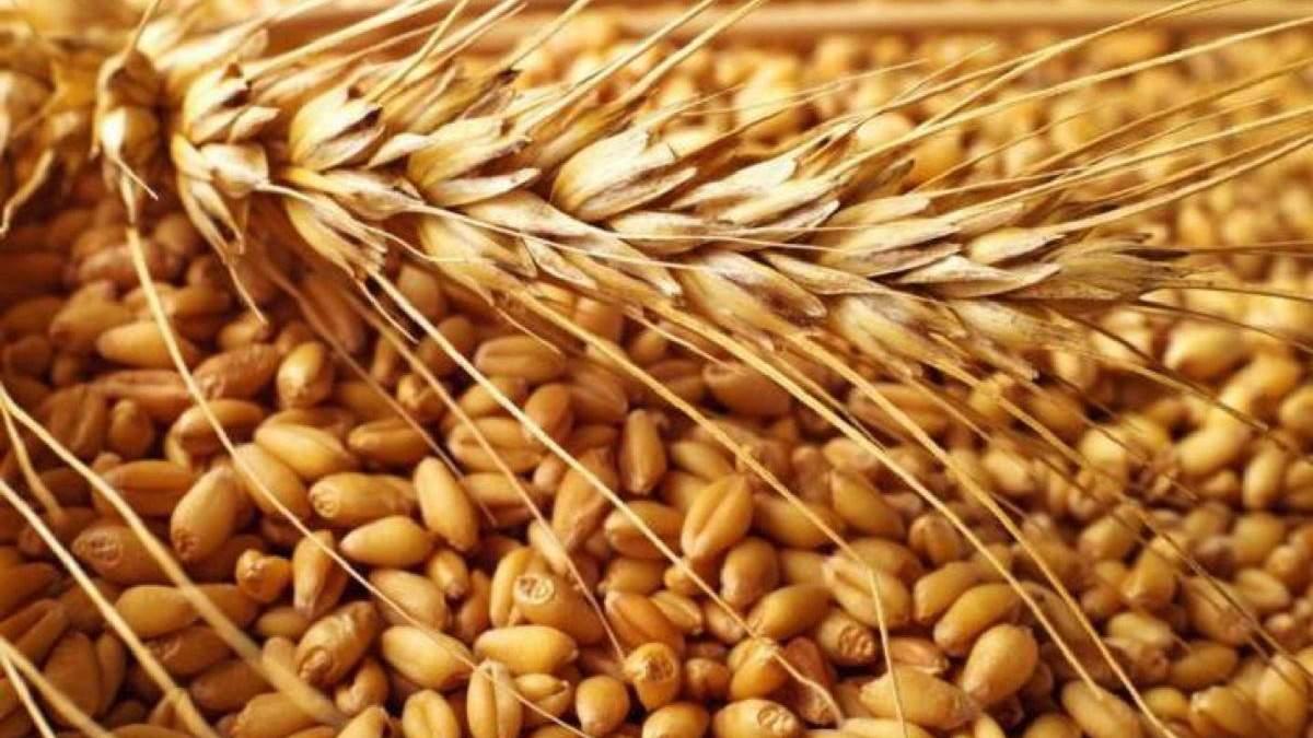 Зерно стало предметом афер