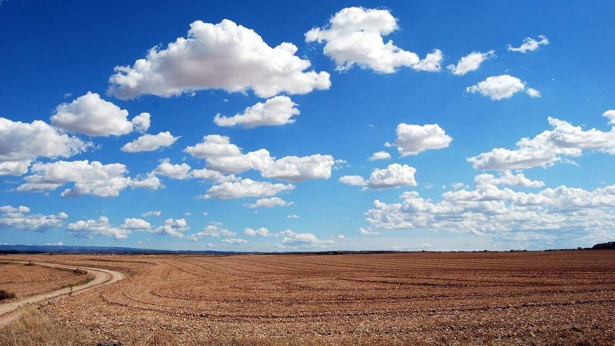 Рада хочет ускорить земельную реформу