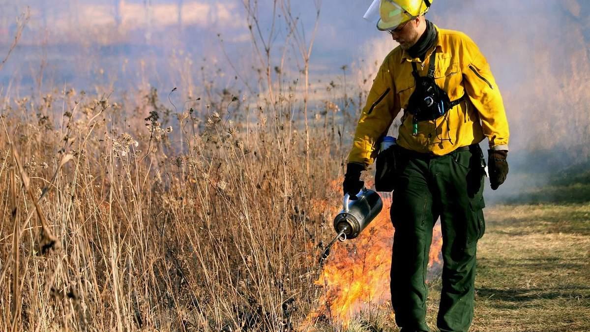 Спалювати рослини заборонено