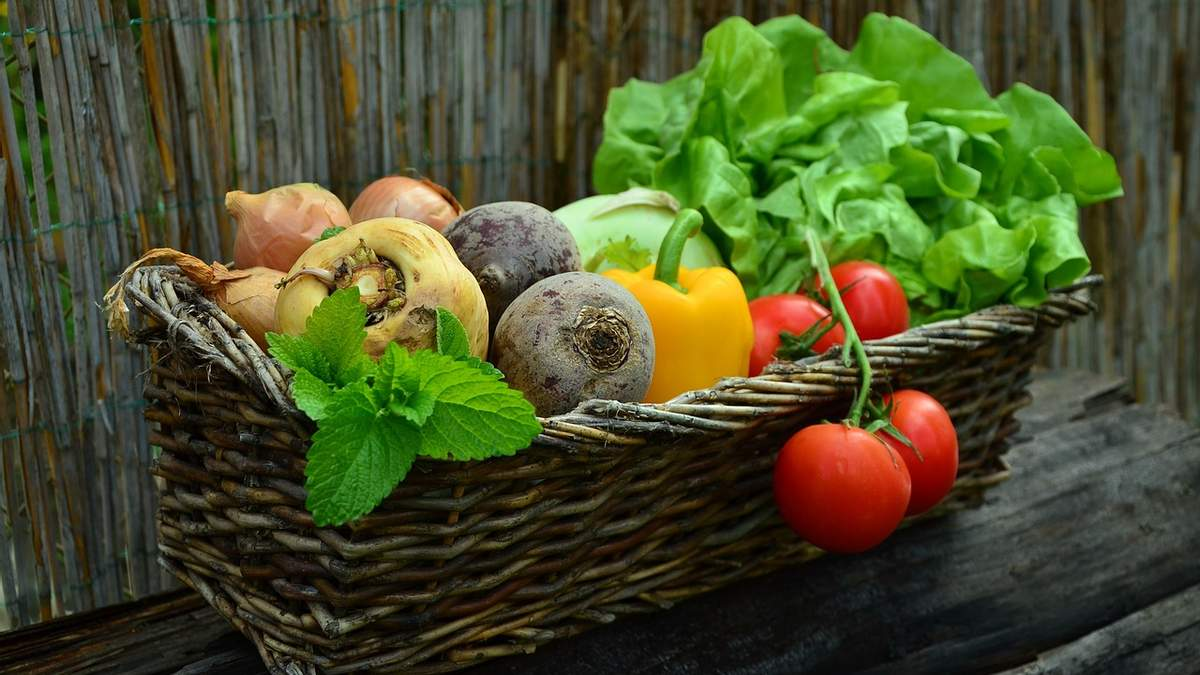 Цьогоріч ранні овочі безпечні для здоров'я