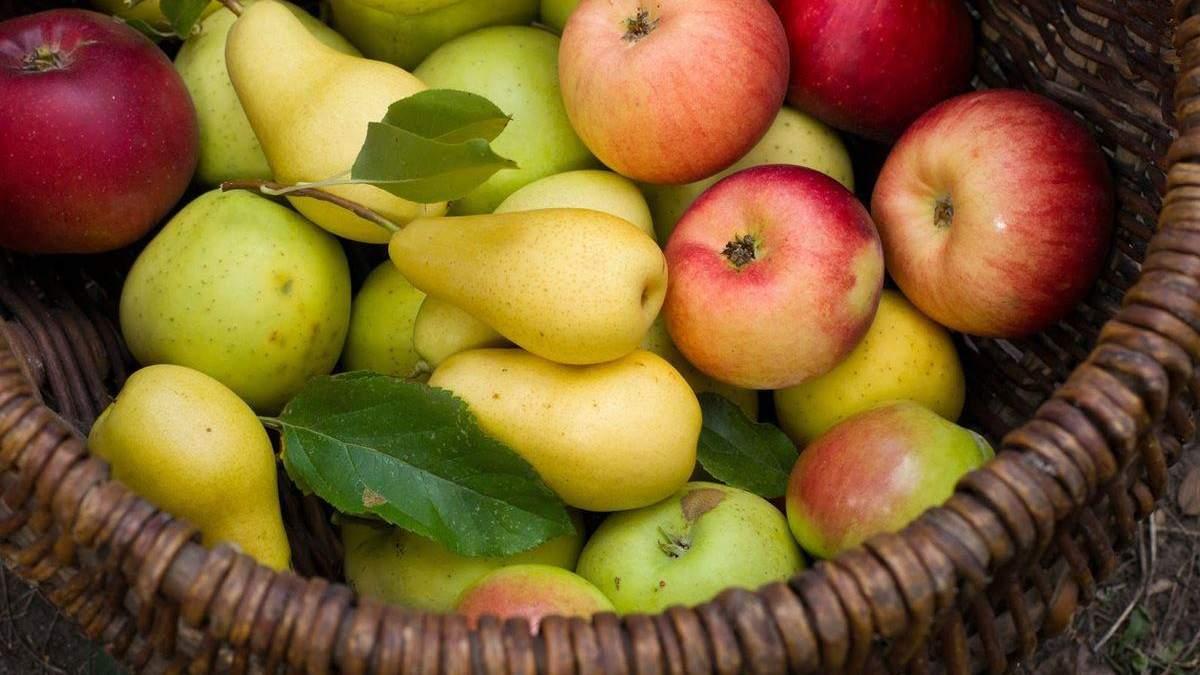 Яблука і груші стають дефіцитом