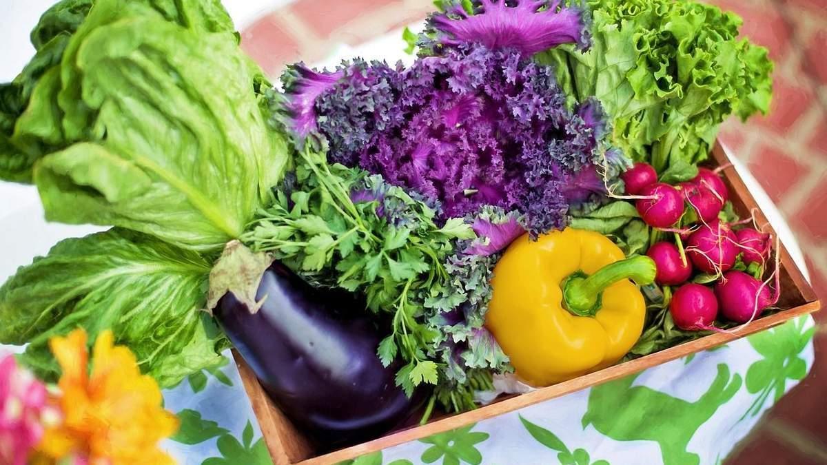 Погода вплине на овочеві ціни: якого стрибка чекати