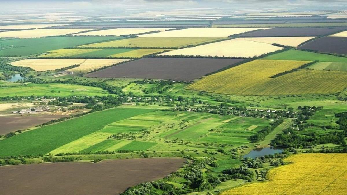 Плата за землю: до бюджету надійшло понад пів мільярда гривень