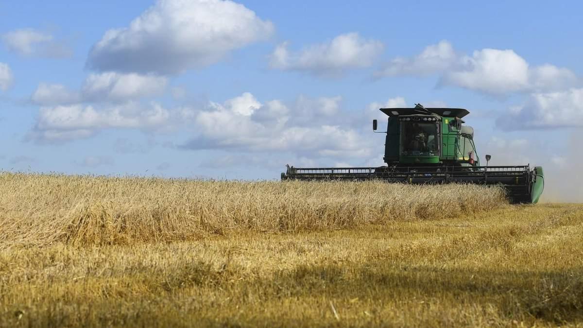 Аграрный сектор Украины в 2021 году покажет третий результат в истории