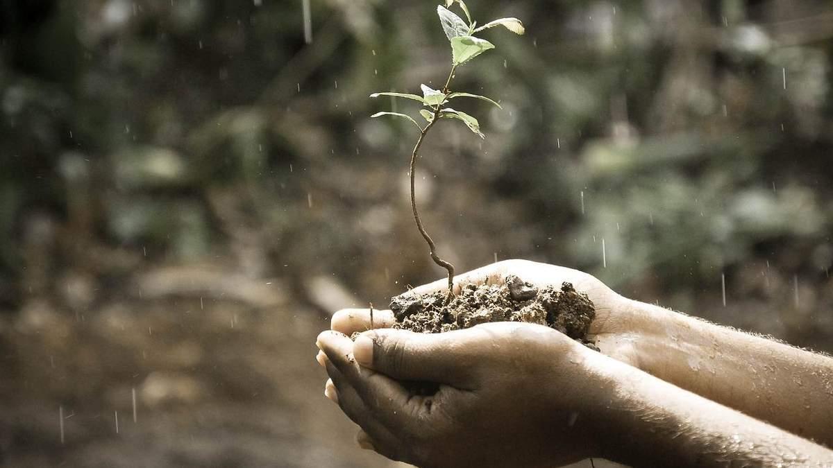 Деградация почв в Украине может стать необратимой