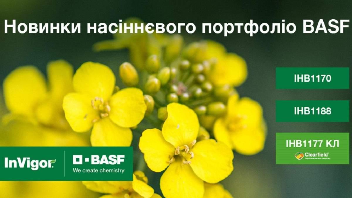 Насіннєве портфоліо BASF