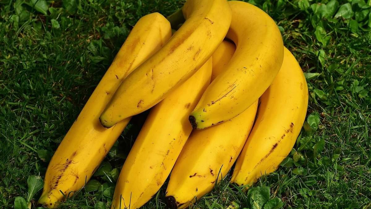 Бананы могут резко подорожать: причин