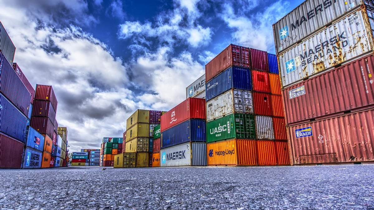 Індія збільшила експорт органічної продукції