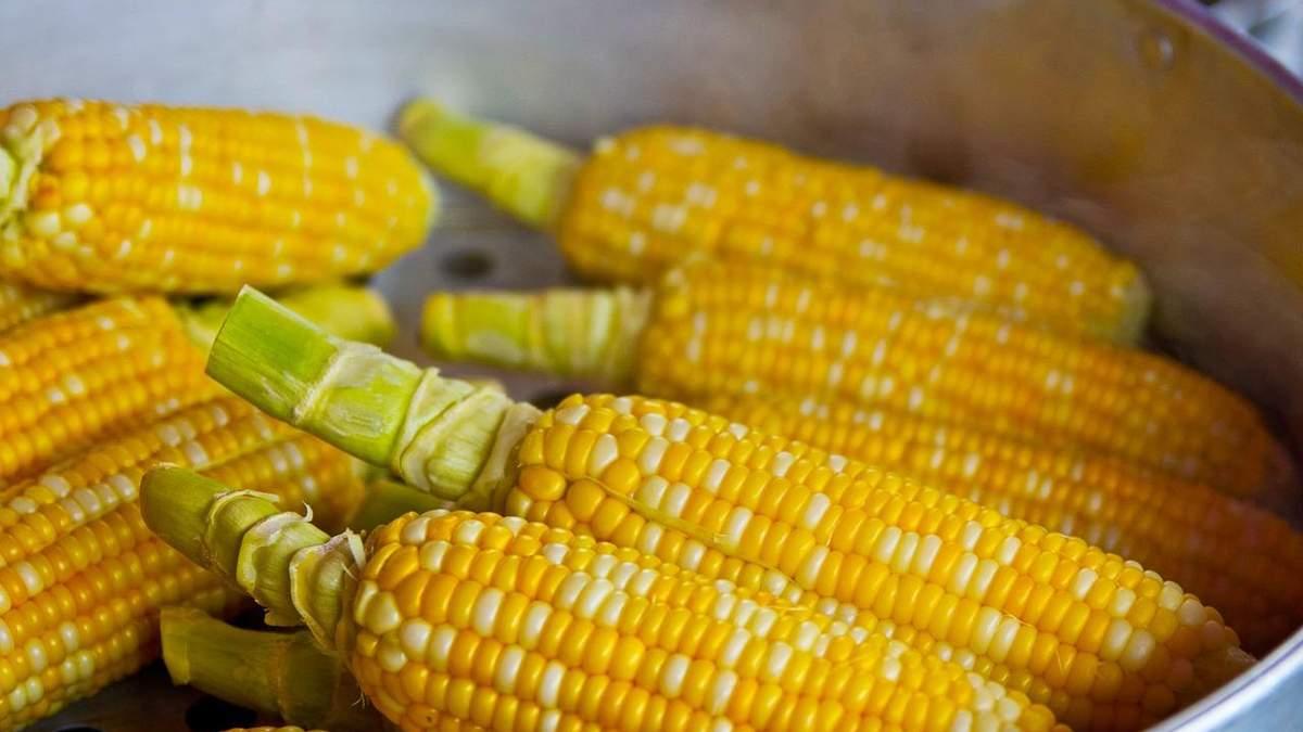 В Укране резко упала цена на кукурузу