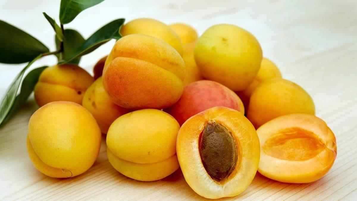 Ученые вывели новый сорт абрикоса: что в нем особенного