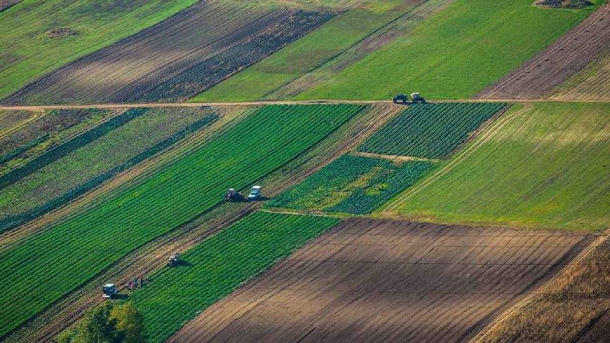 Земля в Україні